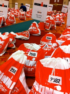 My Run Gear bag (2585) sitting on the floor inside of the Monona Terrace.